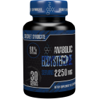 Steel Power ECDYSTERONE 90 капс